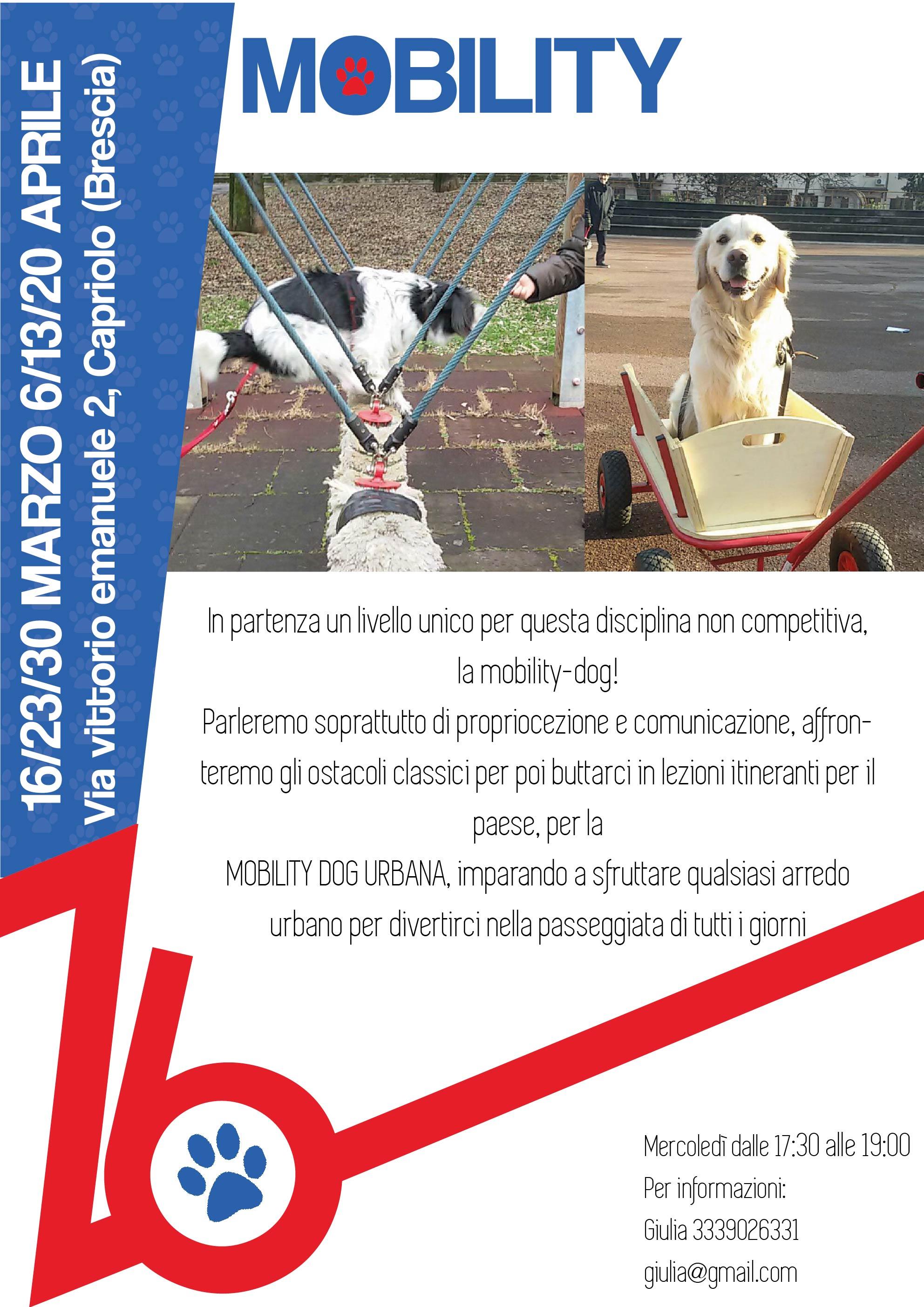 incontri web therapy Ancona
