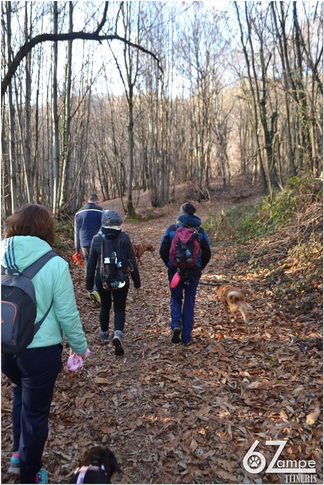 6 Zampe On The Road - Camminando si impara... @ Capriolo | Capriolo | Lombardia | Italia