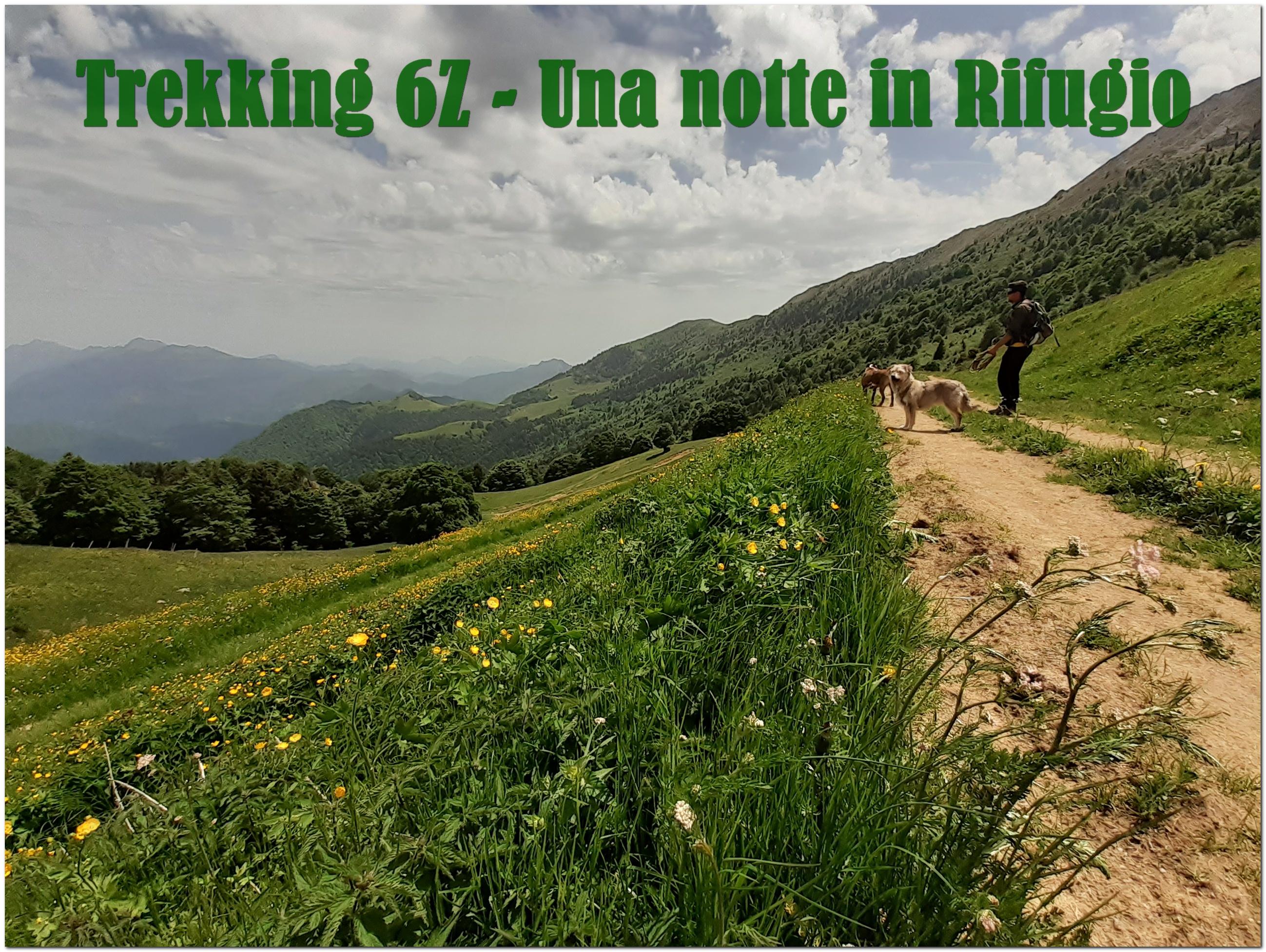 Trekking-Una Notte In Rifugio @ 6Zampe Centro Cinofilo